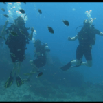Unterwasser-Tanz